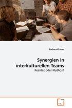 Synergien in Interkulturellen Teams