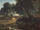 Jean-Baptiste-Camille Corot : Forest of Fontainebleau (1834) Canvas Print