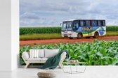 Fotobehang vinyl - Een bus in een landelijk gebied breedte 390 cm x hoogte 260 cm - Foto print op behang (in 7 formaten beschikbaar)