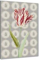 Tulip - Tulp - 40x60 cm - Anne Waltz - PixaPrint - WE-0071-1