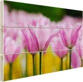 Tulpenbloesems Hout 30x20 cm - klein - Foto print op Hout (Wanddecoratie)