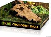 Exo Terra Crocodile Skull - Terrarium Schuiplaats - 22,5 x 12 x 7,5 cm
