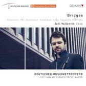 Juri Vallentin - Bridges