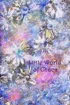 Little World of Chaos