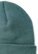 Carhartt Muts Acrylic Watch muts groen blauw - Beanie