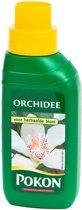 Pokon Plantenvoeding Orchidee - 250 ml