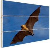 Grote vleermuis in vlucht Hout 60x40 cm - Foto print op Hout (Wanddecoratie)