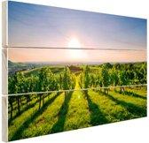 Wijngaard in Duitsland foto Hout 120x80 cm - Foto print op Hout (Wanddecoratie)