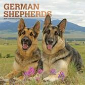 Duitse Herder Kalender 2019