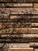 Fotobehang Wood Planks Texture Tree Shadow   XXL - 206cm x 275cm   130g/m2 Vlies