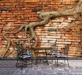 Fotobehang Vlies | Muur | Bruin, Oranje | 368x254cm (bxh)