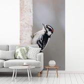 Fotobehang vinyl - Roodkopspecht op een boom breedte 190 cm x hoogte 300 cm - Foto print op behang (in 7 formaten beschikbaar)