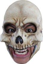 Masker van een schedel voor volwassenen Halloween - Verkleedmasker