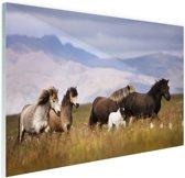 FotoCadeau.nl - Paarden in de bergen Glas 90x60 cm - Foto print op Glas (Plexiglas wanddecoratie)