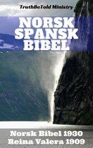 Norsk Spansk Bibel