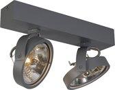 QAZQA Go 2 - Plafond spot - 2 lichts - 305 mm - grijs