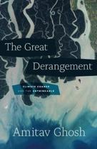 Omslag van 'The Great Derangement'