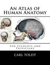 An Atlas of Human Anatomy