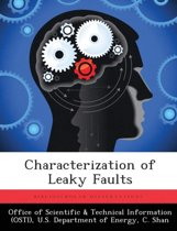 Characterization of Leaky Faults