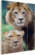 Leeuw en Leeuwin Hout 40x60 cm - Foto print op Hout (Wanddecoratie)