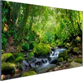 Regenwoudkreek Aluminium 120x80 cm - Foto print op Aluminium (metaal wanddecoratie)