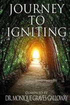 Journey to Igniting