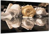 Glasschilderij Roos | Geel, Grijs, Wit | 120x70cm 1Luik | Foto print op Glas |  F002511