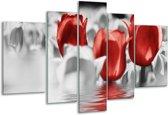 Glasschilderij Tulpen | Grijs, Rood | 170x100cm 5Luik | Foto print op Glas |  F002925