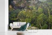 Fotobehang vinyl - Regenwoud in het Nationaal park Manu in Peru breedte 420 cm x hoogte 280 cm - Foto print op behang (in 7 formaten beschikbaar)