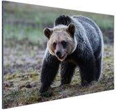 FotoCadeau.nl - Beer  Aluminium 60x40 cm - Foto print op Aluminium (metaal wanddecoratie)