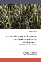 Slash-And-Burn Cultivation and Deforestation in Madagascar