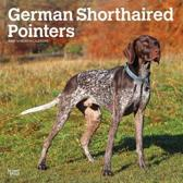 German Shorthaired Pointers Intl 2020 Square Wall Calendar