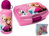 Frozen / lunchbox / broodtrommel & aluminium drinkbeker / roze