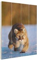 Poema in de sneeuw Hout 60x80 cm - Foto print op Hout (Wanddecoratie)