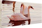 Zwanen paar zonsondergang Hout 120x80 cm - Foto print op Hout (Wanddecoratie)