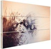 Veer  Hout 80x60 cm - Foto print op Hout (Wanddecoratie)