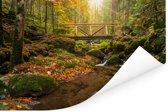 Het Zwarte Woud in Duitsland tijdens de herfst Poster 120x80 cm - Foto print op Poster (wanddecoratie woonkamer / slaapkamer)