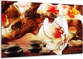 Glasschilderij Bloem | Wit, Rood, Geel | 120x70cm 1Luik | Foto print op Glas |  F004777