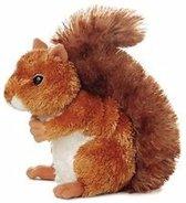 Pluche eekhoorn knuffel 16 cm - knuffeldier / knuffels