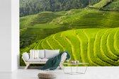 Fotobehang vinyl - Bovenaanzicht van de Rijstterrassen van Lóngjĭ in China breedte 540 cm x hoogte 360 cm - Foto print op behang (in 7 formaten beschikbaar)