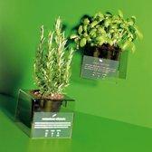 Kruidenbakje My Grass kunststof transparant groen