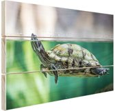 Close-up foto van schildpad Hout 120x80 cm - Foto print op Hout (Wanddecoratie)