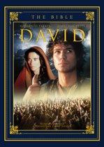 De Bijbel 7: David Dvd St