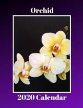 Orchid 2020 Calendar