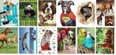 12 Blanco dierenkaarten - Wenskaarten zonder tekst - Inclusief enveloppen - 16x11cm