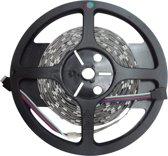 RGB LED Strip 7,2 watt/m 220 lumen/m IP20 12V LENGTE 5 METER