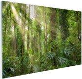 Licht in het woud Glas 180x120 cm - Foto print op Glas (Plexiglas wanddecoratie) XXL / Groot formaat!