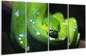 Glasschilderij Natuur   Groen, Zwart   160x80cm 4Luik   Foto print op Glas    F006124