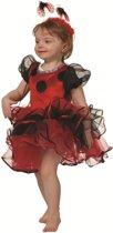 Lieveheersbeest jurkje bugsley voor kind