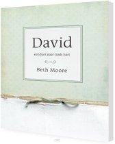 David (werkboek)